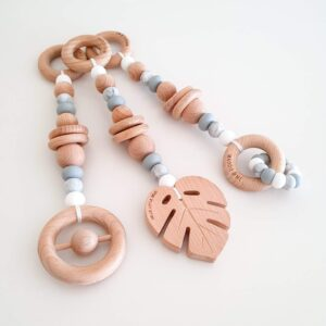 Monstera Playgym Toy Set